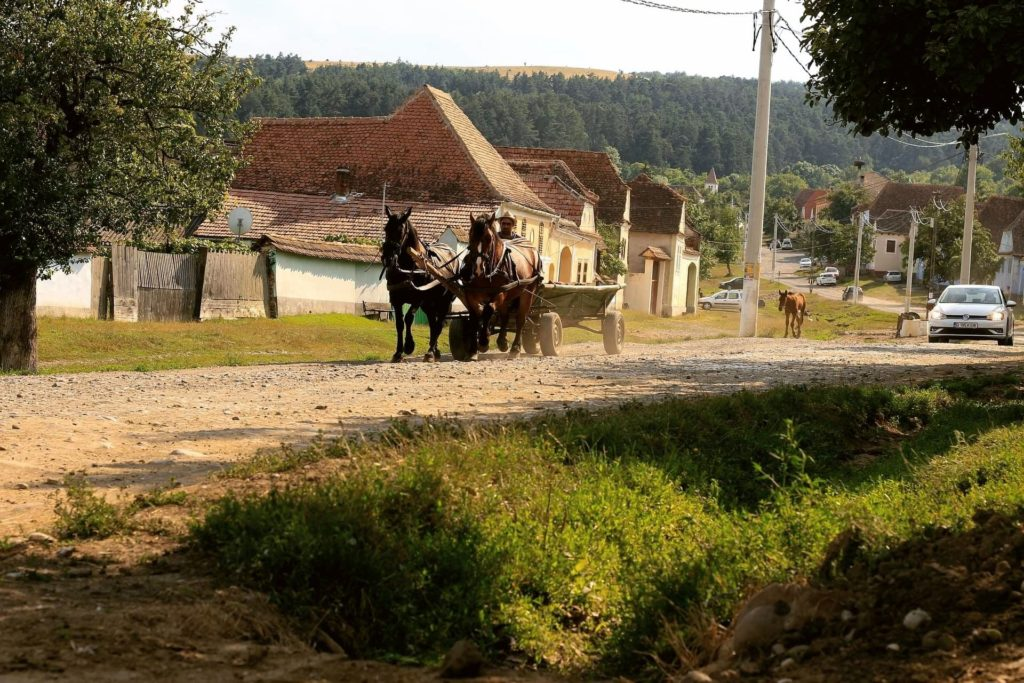 Horse and carriage coming down dirt road in rural Romania (Transylvania).
