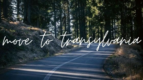 Move to Transylvania Graphic with road through forest